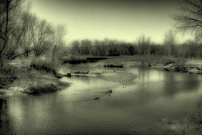 Ducks On The South Platte River II Art Print