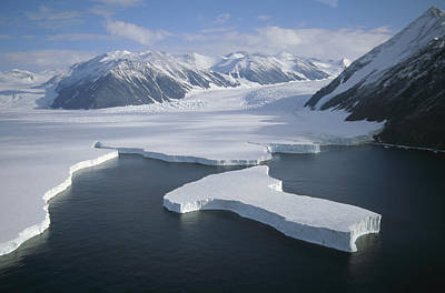 Victoria Land Photograph - Dugdale And Murray Glaciers Antarctica by Tui DeRoy