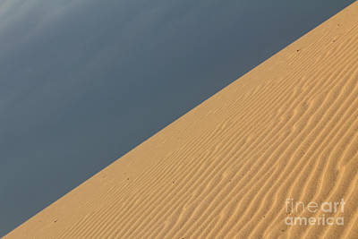 Photograph - Dune Diagonal by Alycia Christine