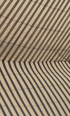 Photograph - Dune Fence by Christopher Kirby