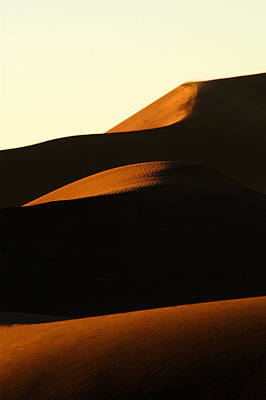 Photograph - Dune Mood by Alistair Lyne