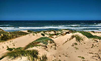 Dunes And The Pacific Art Print by Steven Ainsworth