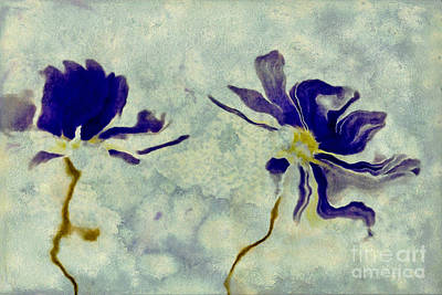 Daisy Digital Art - Duo Daisies by Variance Collections