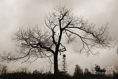 Photograph - Dusk Winter Tree Silhouette With Fire Tower by John Stephens
