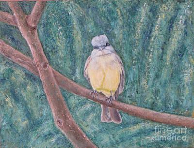 Dusky Flycatcher Art Print by Judith Zur