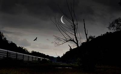 Photograph - Dusky Tracks  by Emily Stauring