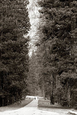 Photograph - Dwarfed By Giants by Lorraine Devon Wilke