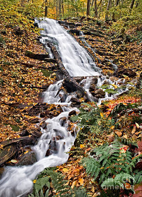 Photograph - Dwg Falls by Susan Candelario