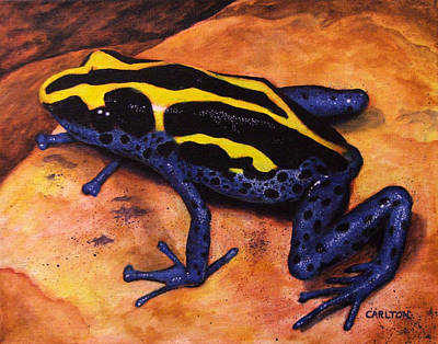 Brian Carlton Art Painting - Dyeing Frog by Brian Carlton