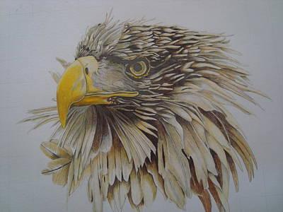 Eagel Art Print by Per-erik Sjogren
