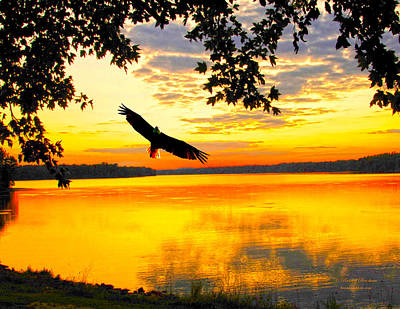 Art Print featuring the photograph Eagle At Sunset by Randall Branham
