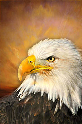 Eagle Burst Art Print by Marty Koch