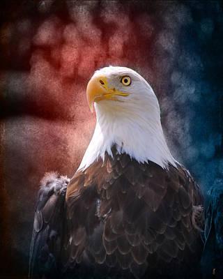 Eagle I Art Print by Jai Johnson