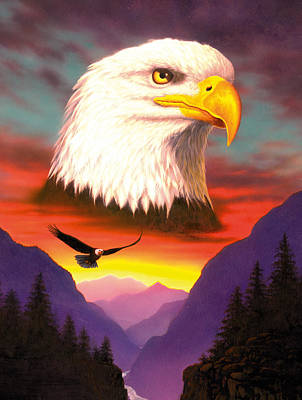 Eagle Art Print by MGL Studio - Chris Hiett