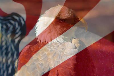 Eagle Art Print by Rebecca Frank
