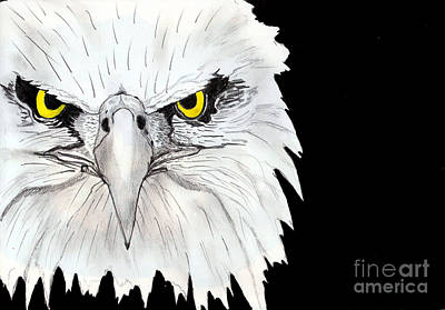 Shashi Kumar Painting - Eagle by Shashi Kumar