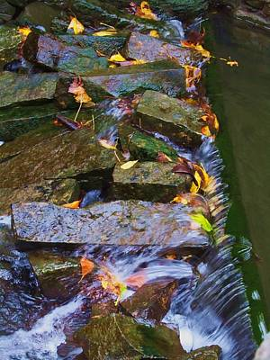 Photograph - Early Autumn 2 by Todd Sherlock