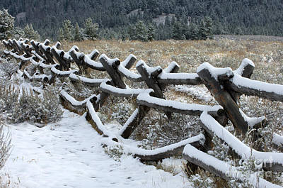 Photograph - Early Fall Snow by Sandra Bronstein