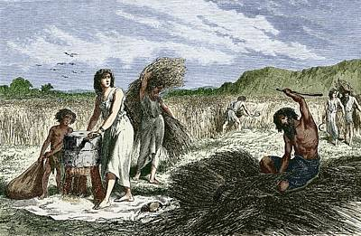 Early Humans Harvesting Crops Art Print by Sheila Terry