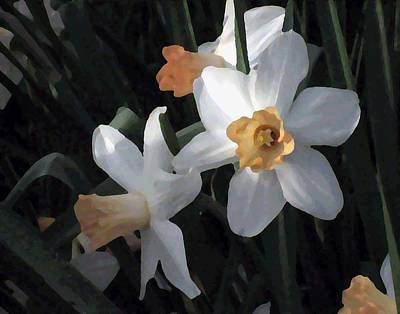 Photograph - Early Jonquils by Sherry Oliver