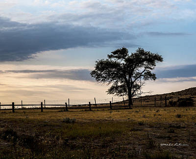 Photograph - Early Morning by Edward Peterson
