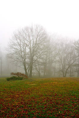 Photograph - Early Morning Fog by Ann Murphy