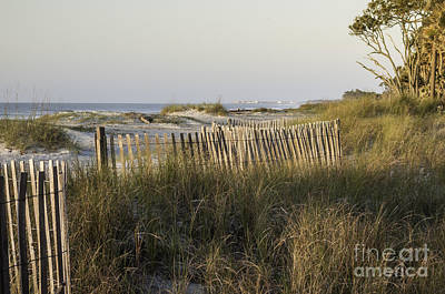 Photograph - Early Morning Light by David Waldrop
