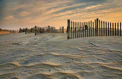 Early Morning On The Dunes II Art Print by Steven Ainsworth
