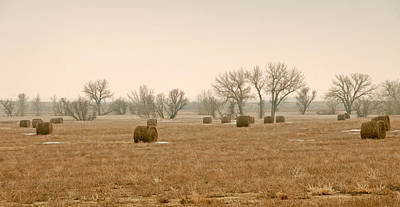 Photograph - Earlying Morning Hay Bails by James Steele