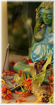 Photograph - Earth Goddess by Shelley Bain