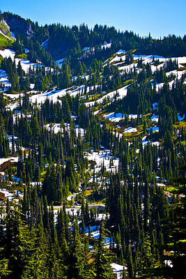 Photograph - East Of Mt. Rainier by David Patterson