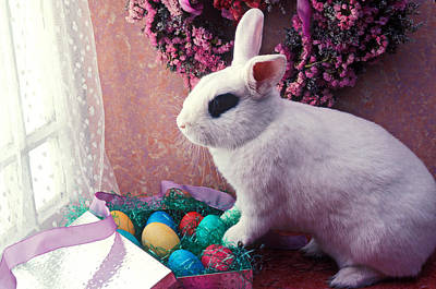 Easter Bunny Art Print by Garry Gay