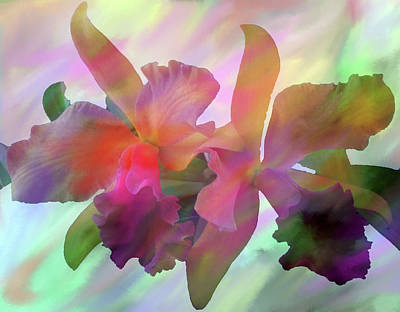 Designers Choice Digital Art - Easter Orchids by Don Wright