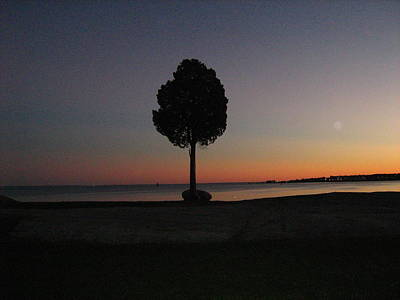 Eastern Sunset And Moon Rise Art Print by Bruce Carpenter