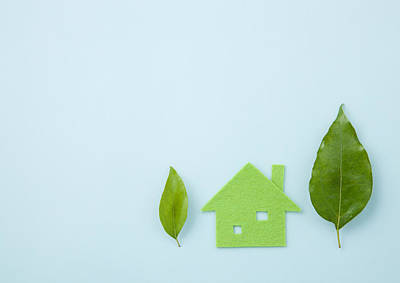 Y120831 Photograph - Eco House And Leaves by sozaijiten/Datacraft