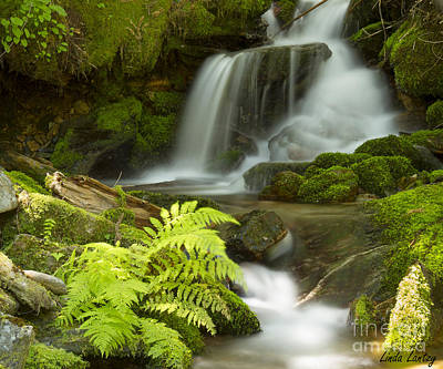 Photograph - Eden by Idaho Scenic Images Linda Lantzy
