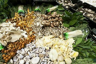 Cep Photograph - Edible Fungi At A Market by Jeremy Walker