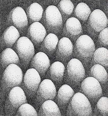 Drawing - Egg Drawing 089917 by Phil Burns
