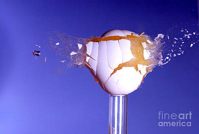 Egg Hit By A Bullet Art Print by Ted Kinsman