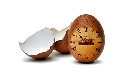 Photograph - egg by Mariusz Zawadzki