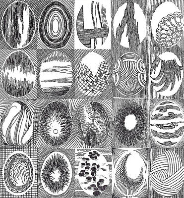 Drawing - Egg Quilt2 by Phil Burns