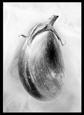 Photograph - Eggplant And Border by Marilyn Hunt
