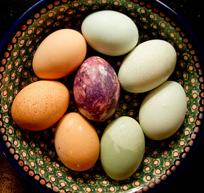 Photograph - Eggs by Jean Noren