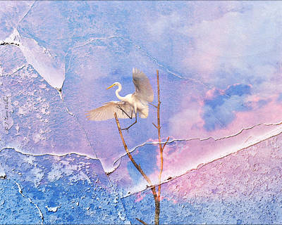 Digital Art - Egret Coming In For Landing by J Larry Walker