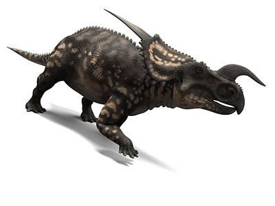 Einiosaurus Dinosaur, Artwork Art Print by Sciepro