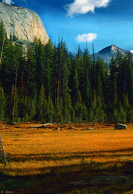 Photograph - El Cap In Yosemite by C Sitton