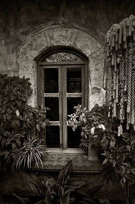 Flower Photograph - El Sitio Window by Tom Bell