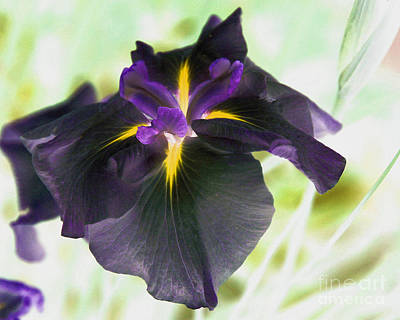 Negative Effect Digital Art - Electric Japanese Iris by Smilin Eyes  Treasures