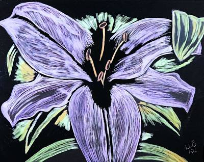 Lilies Drawings - Electric Lily phase two by Lisa Brandel
