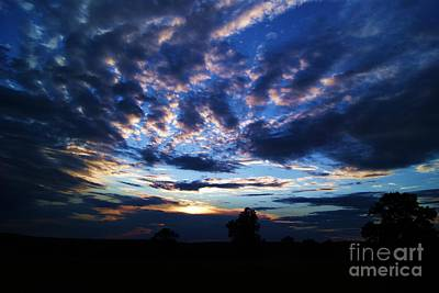 Photograph - Electric Sunset by Julie Clements